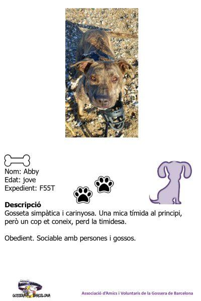 Fitxes gossos_page-0001