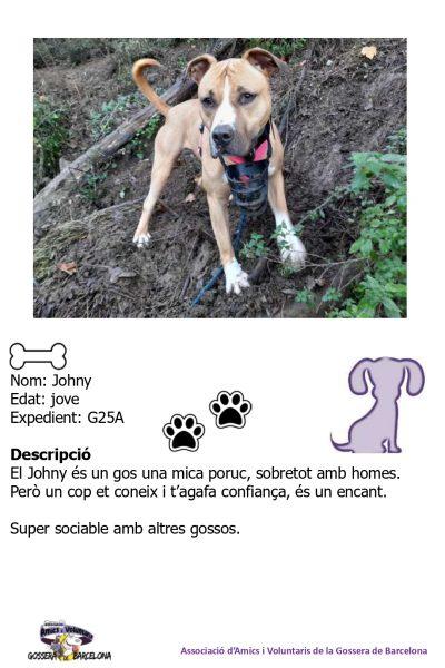 Fitxes gossos_page-0005