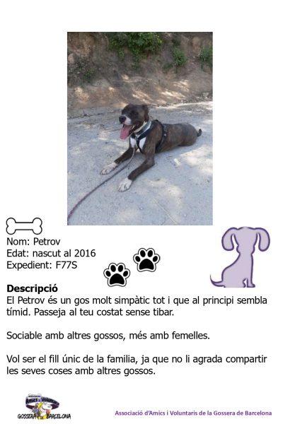 Fitxes gossos_page-0006